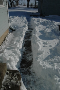 The path I cleared from my house to my garage