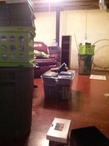 The big clear tub and the two green crates are stuffed full of most of my movie collection